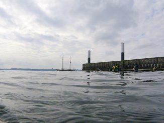 Schnorchelsafari in Kiel-Holtenau - Wr entdecken die Unterasserwelt der Ostsee