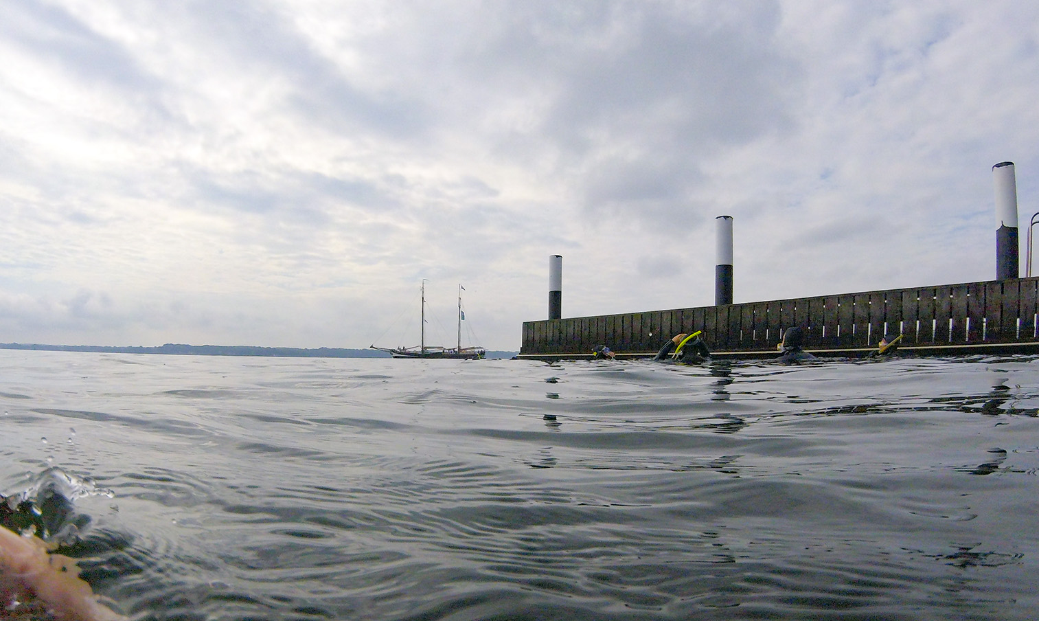 Schnorchelsafari: Die Unterwasserwelt der Ostsee erkunden