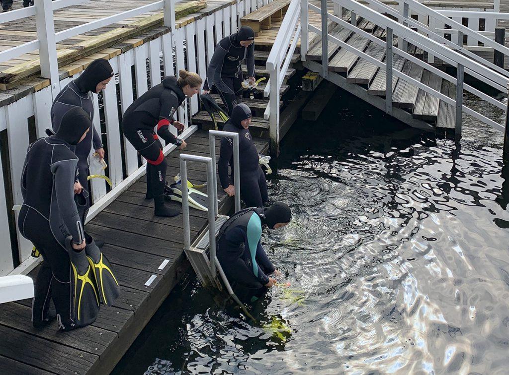 Auf geht es zur abenteurlichen Entdeckungstour in der Ostsee