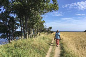 Wandern am Meer: An Fehmarns Südküste zum Staberhuk