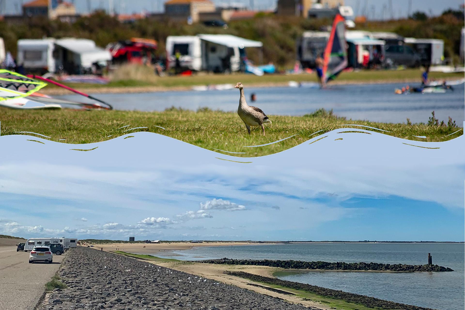 Strandbesuch: Surf-Happening am Brouwersdam, NL