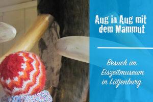 Eiszeitmuseum Lütjenburg: Aug' in Aug' mit dem Mammut